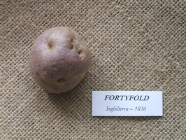 fortyfold