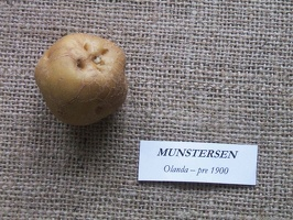 munstersen