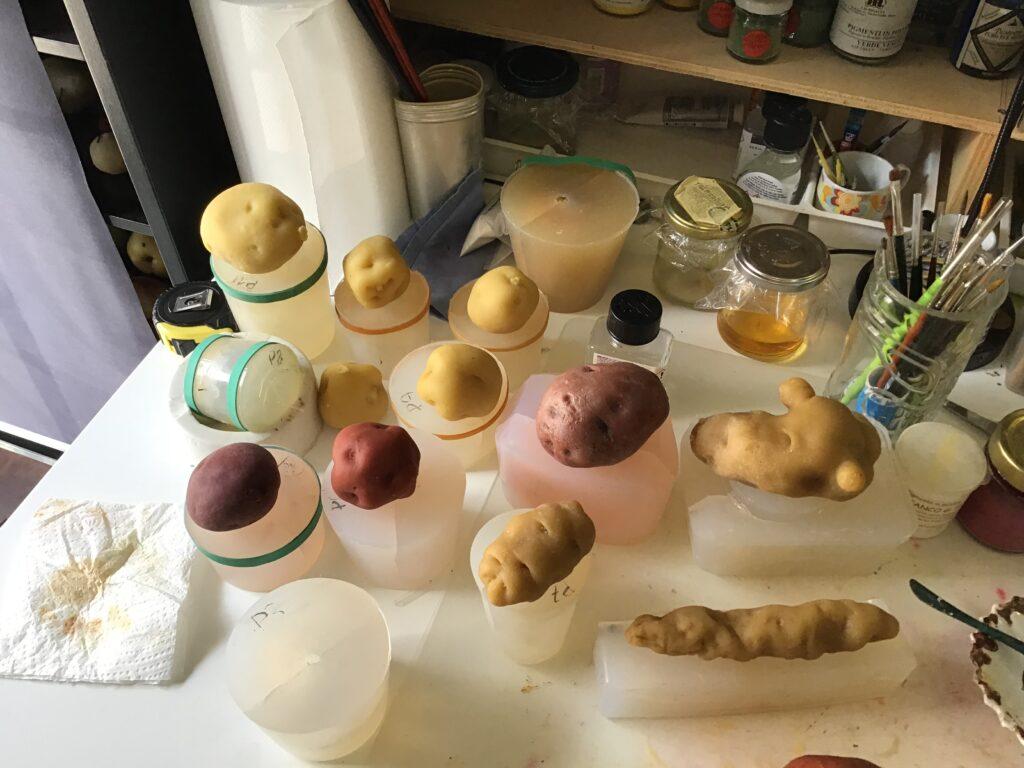 le patate di cera in fase di colorazione